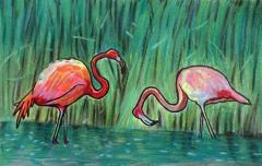 粉色火烈鸟